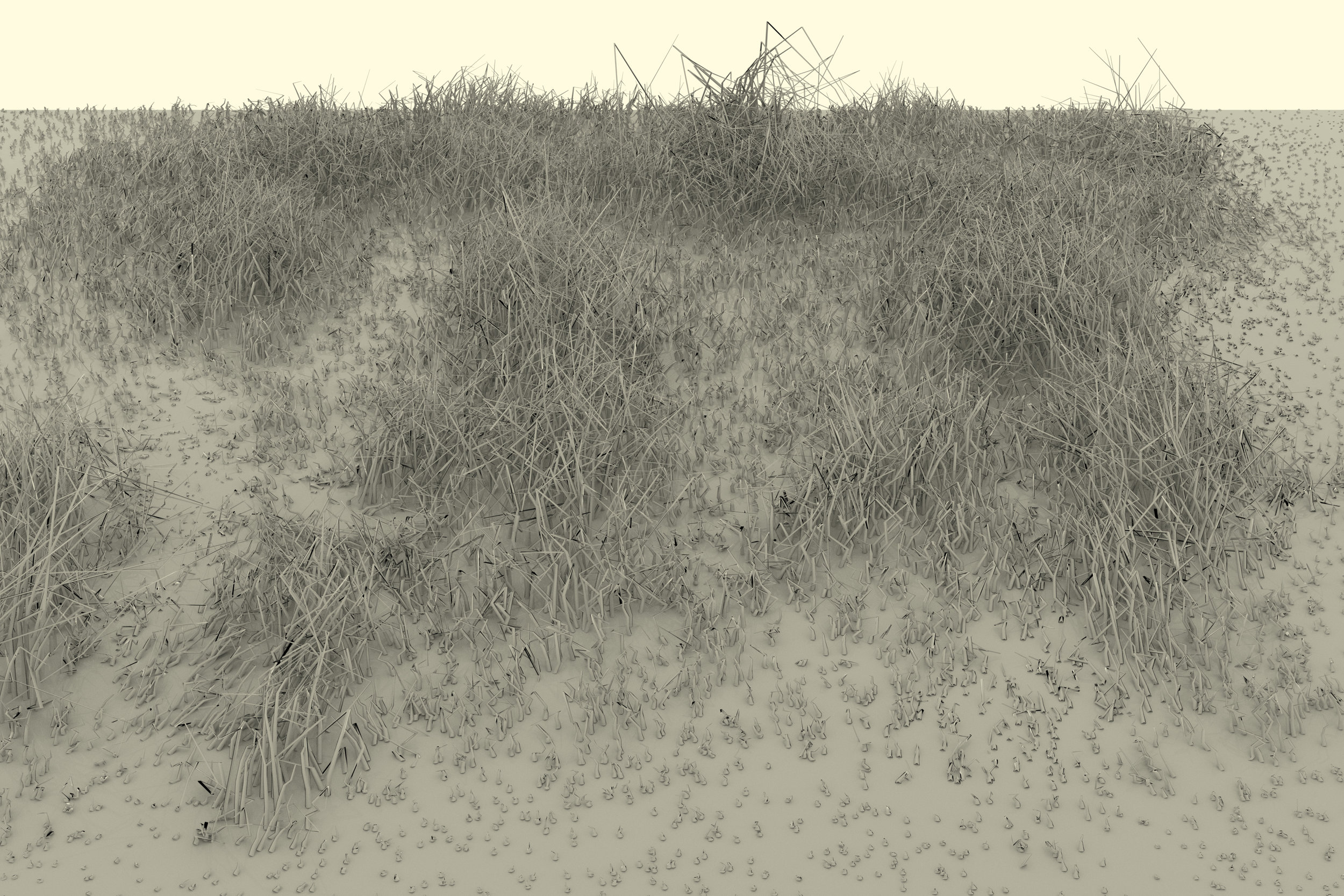 grassscape6.jpg