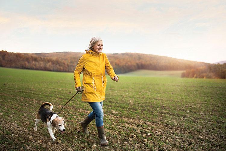 MPC-Dog-Walk-iStock-877023506.jpg