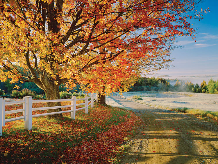 MPC-country-road-iStock-157648838.jpg