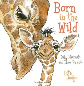 born in the wild lita judge 2014 new science kids book long enough