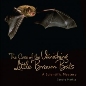 case vanishing little brown bats 2014 new science kids book long enough
