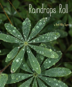 raindrops roll 2015 new kids picture books non-fiction a book long enough