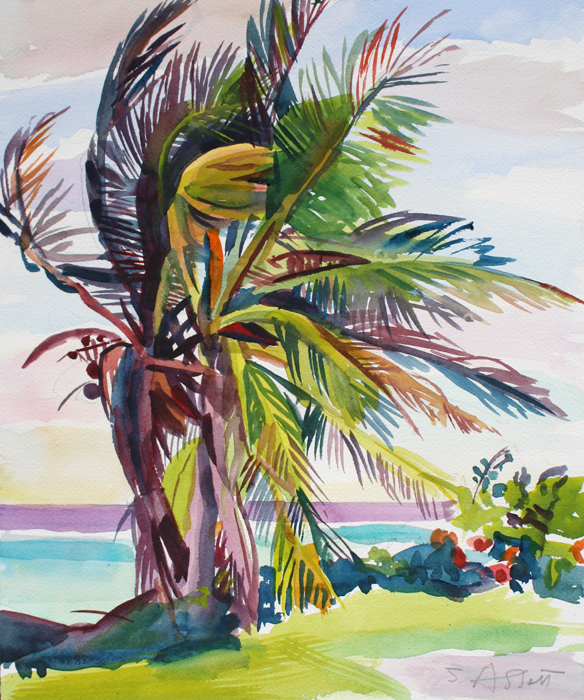 """Big Palm, Windy Day, Hope Town"", 15"" x 12"", watercolor"