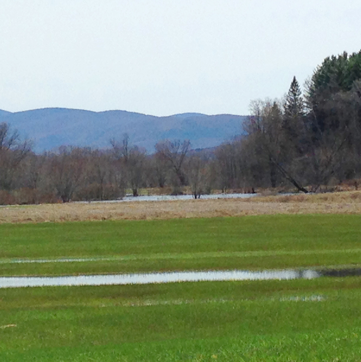 Wetlands and croplands on the Johnson farm