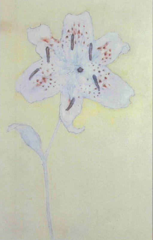 """Piet Mondrian, """"White Lily"""""""