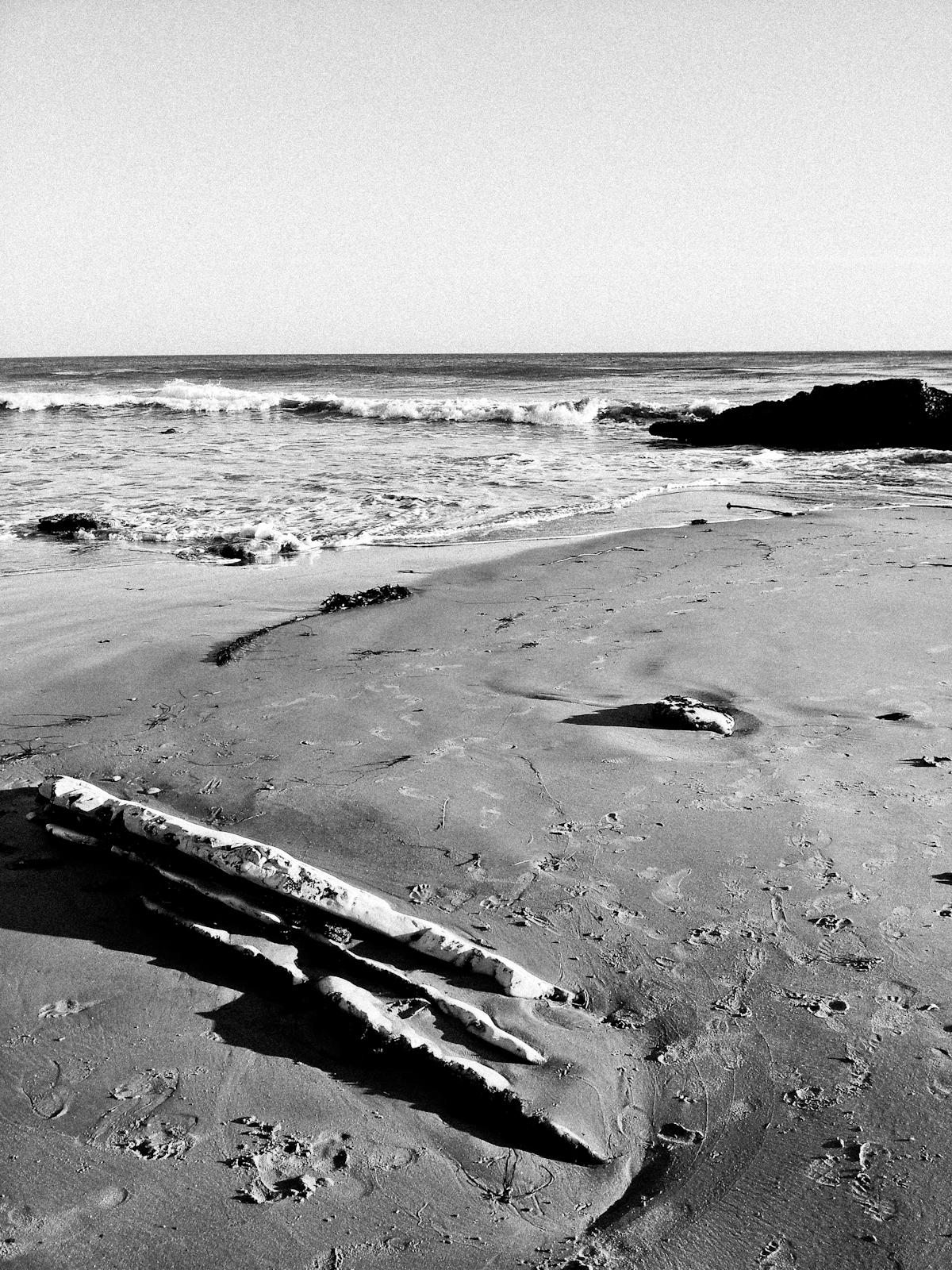 Trunk_Beach.jpg
