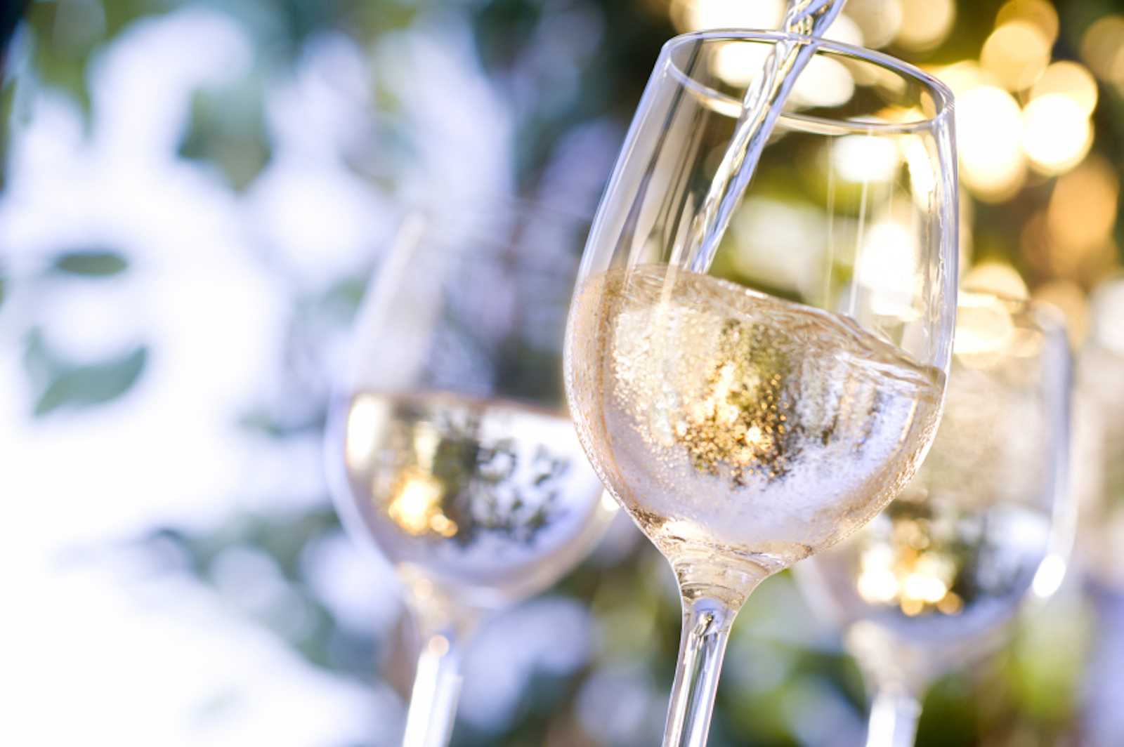 Spring Wines.jpg