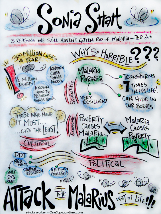 VisualThinking_GraphicRecording_SoniaShah_TedTalk_MelindaWalker_OneSquigglyLine