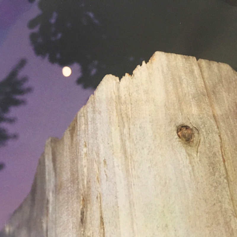 THE MOON OVER MY BACKYARD FENCE IN THE 90s.