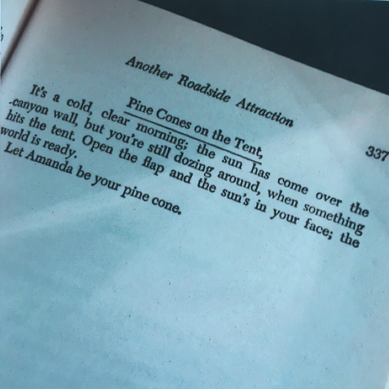 The last page of one of my favorite books where Tom Robbins puts the ball back in your court.