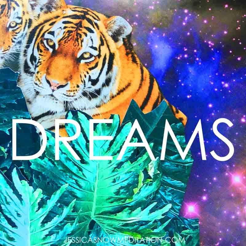 DREAMSTIGERS.jpg