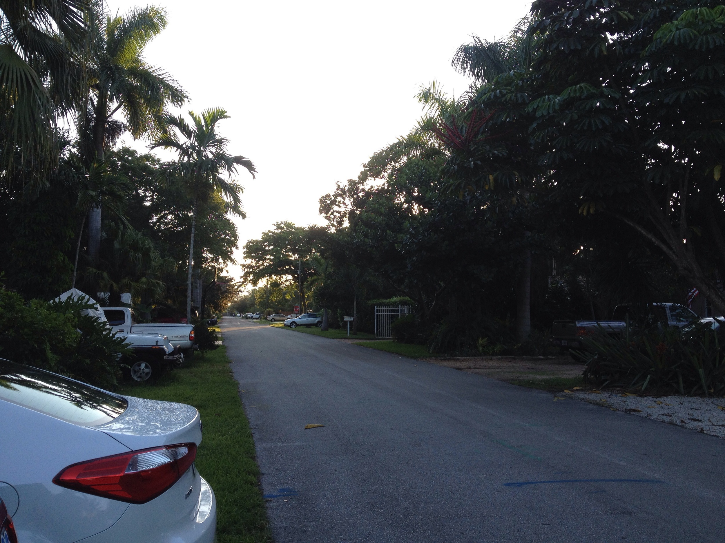 SW 13th St, early morning.
