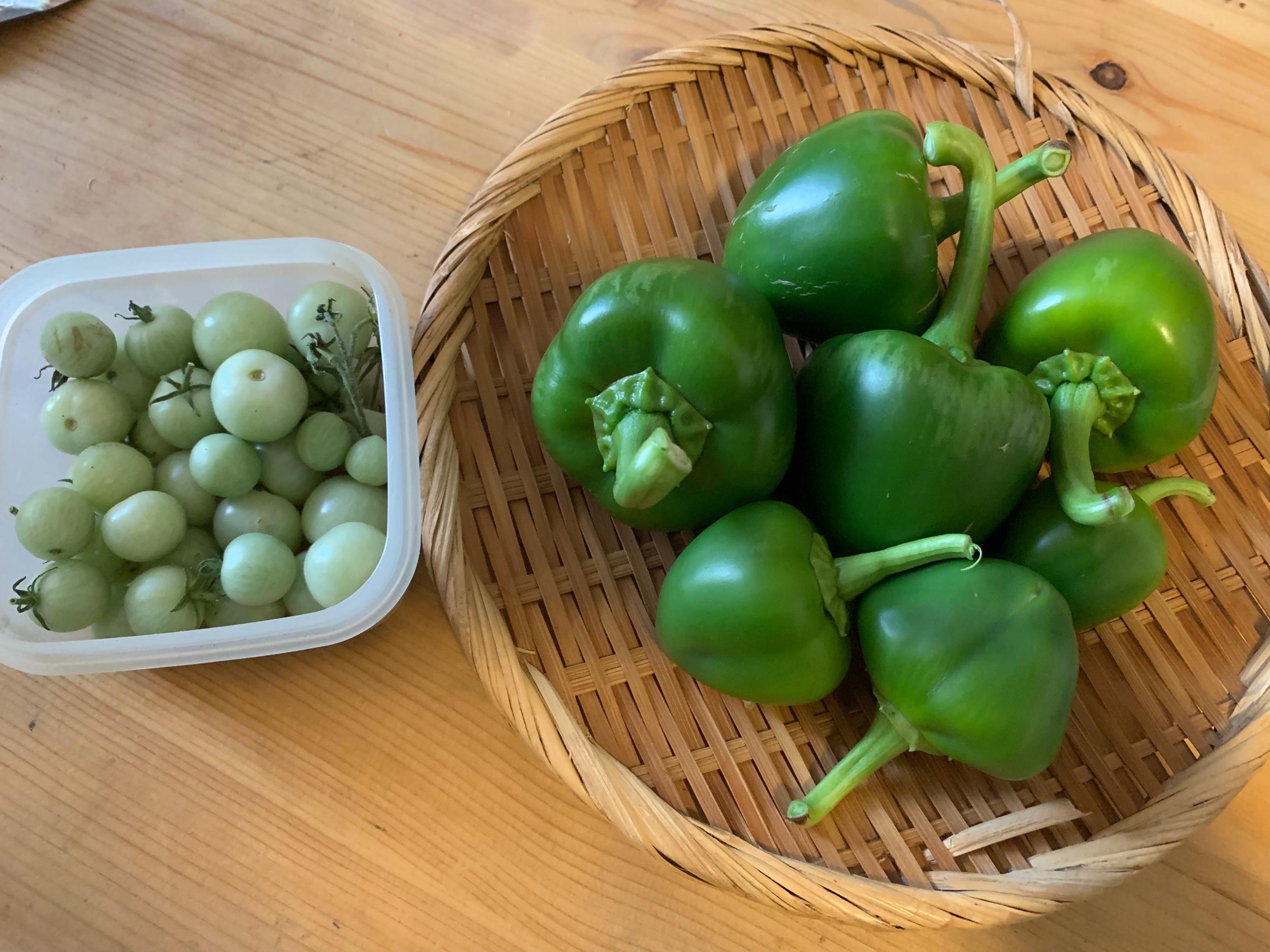 Planning to make jam with green tomato and green apple. 青いトマトと青リンゴのジャムを作ってみようかな。。。