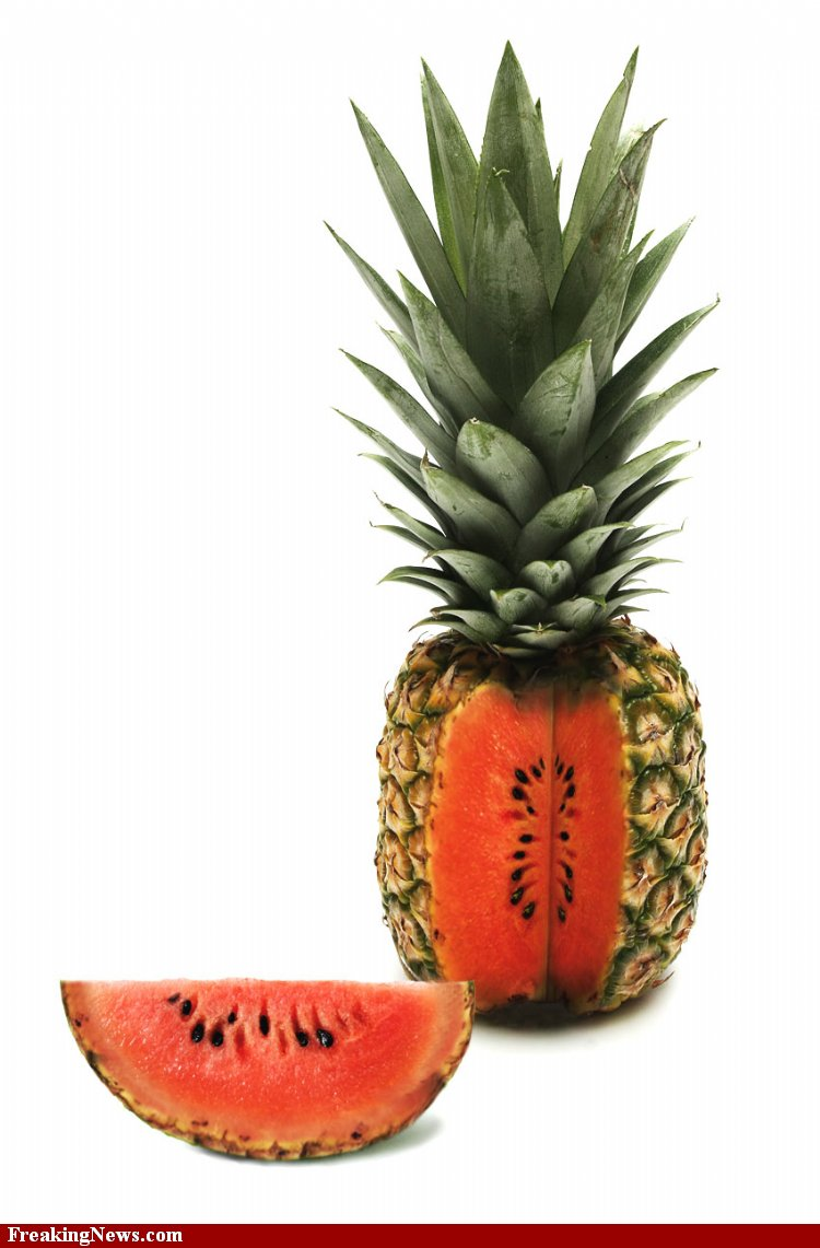 Pineapple-Watermelon--32545 (1).jpg