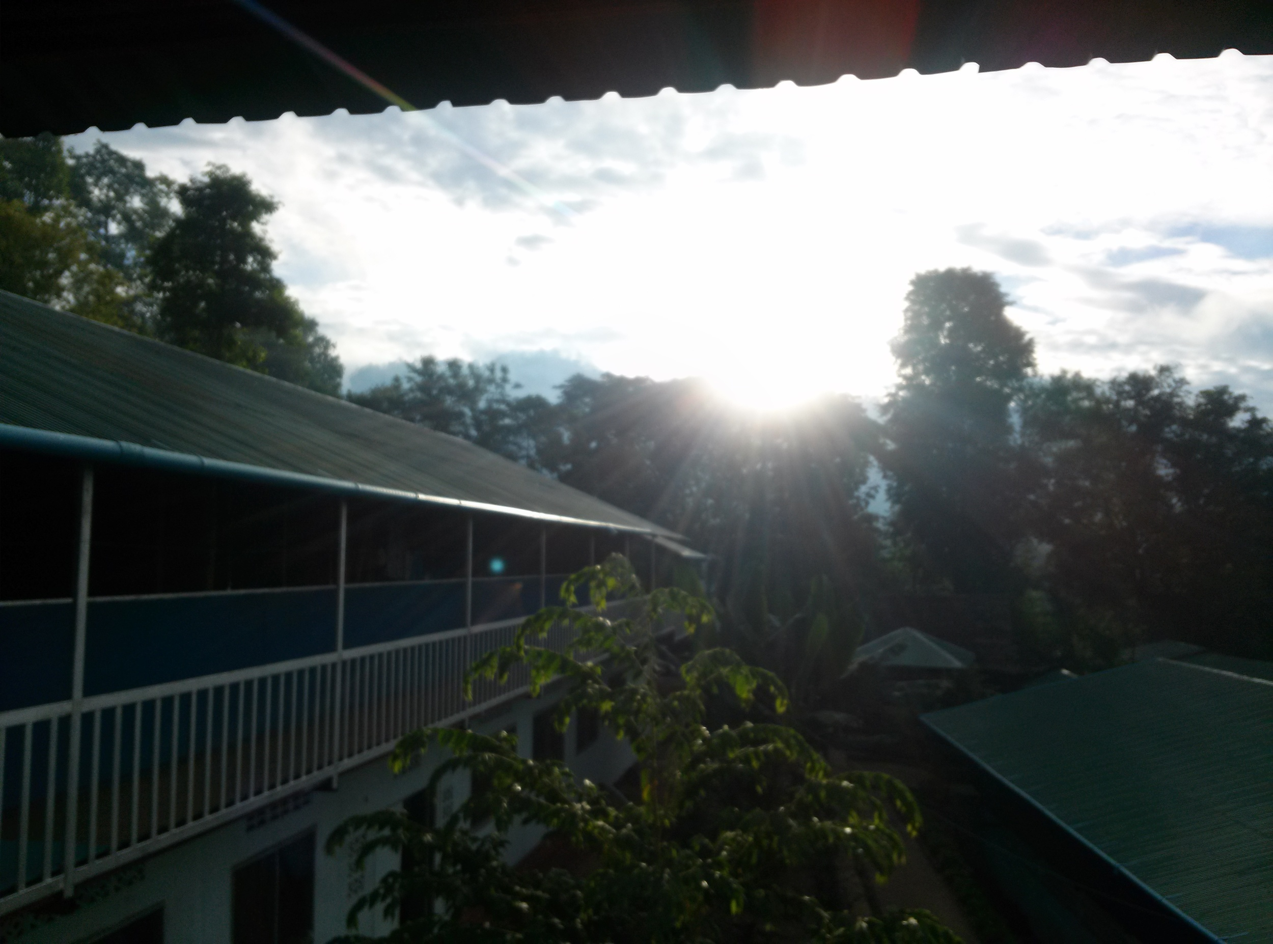 Morning view