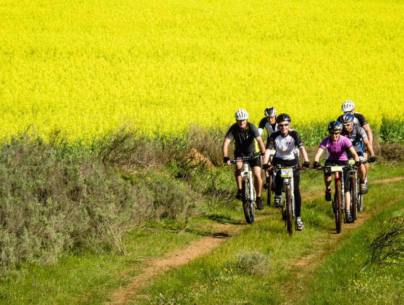 Greyton cycling (5 of 7) 1.jpg