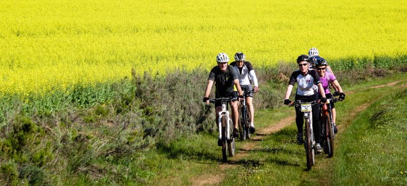 Greyton cycling (6 of 7) 1.jpg