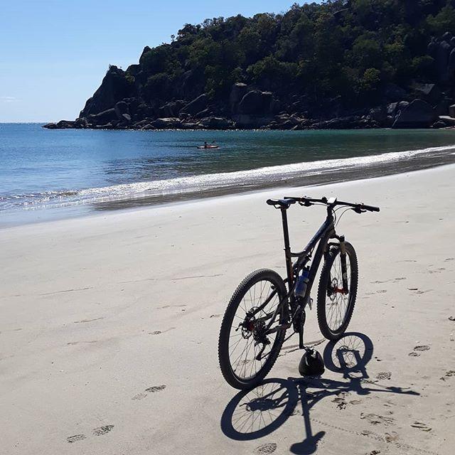 Coconut Bike Stand - Island Style!