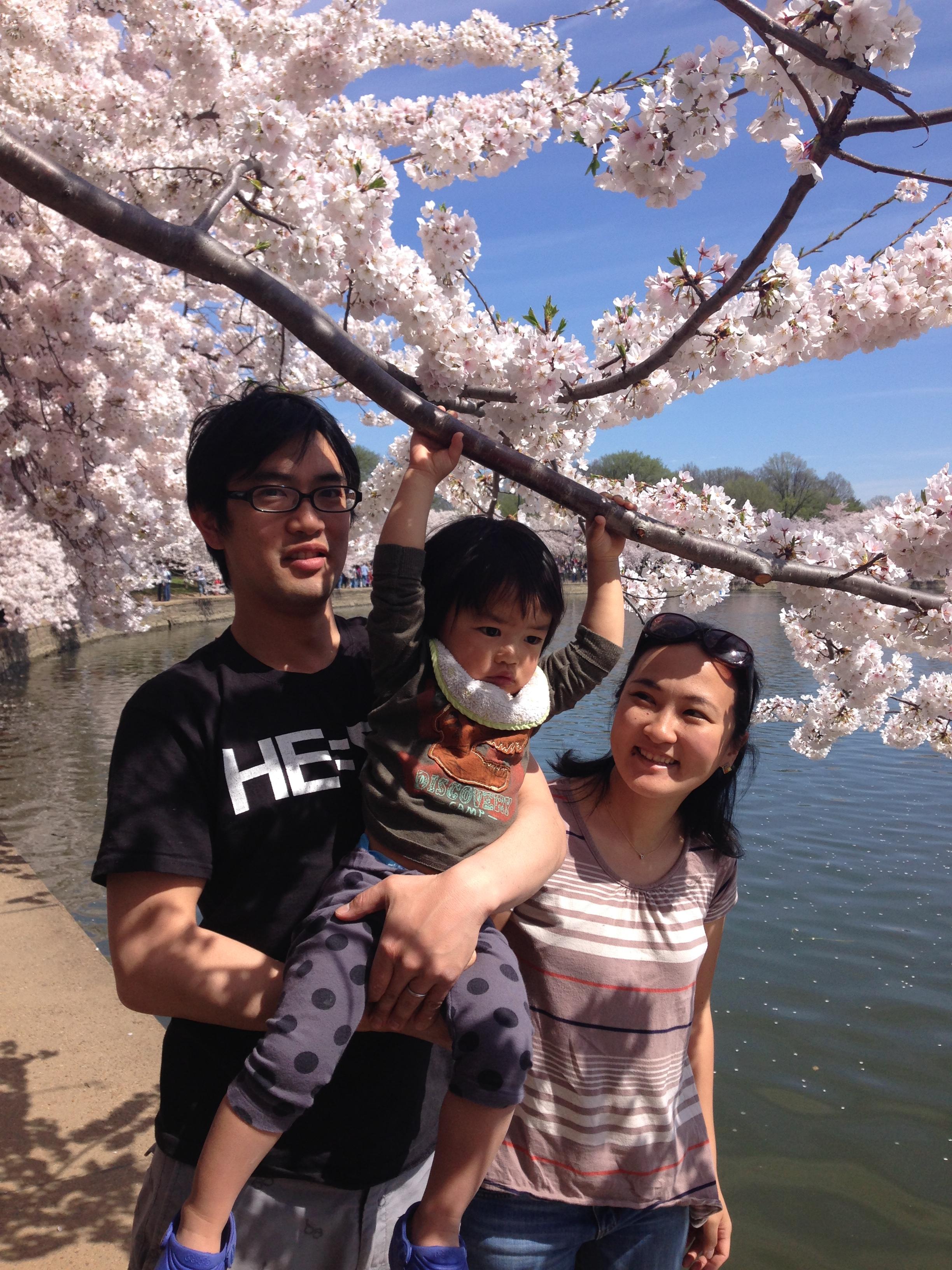 Kanata,de 22 meses, com o pai (Kensuke Arai) e a mãe (Madoka Arai): família japonesa visitando as cerejeiras.