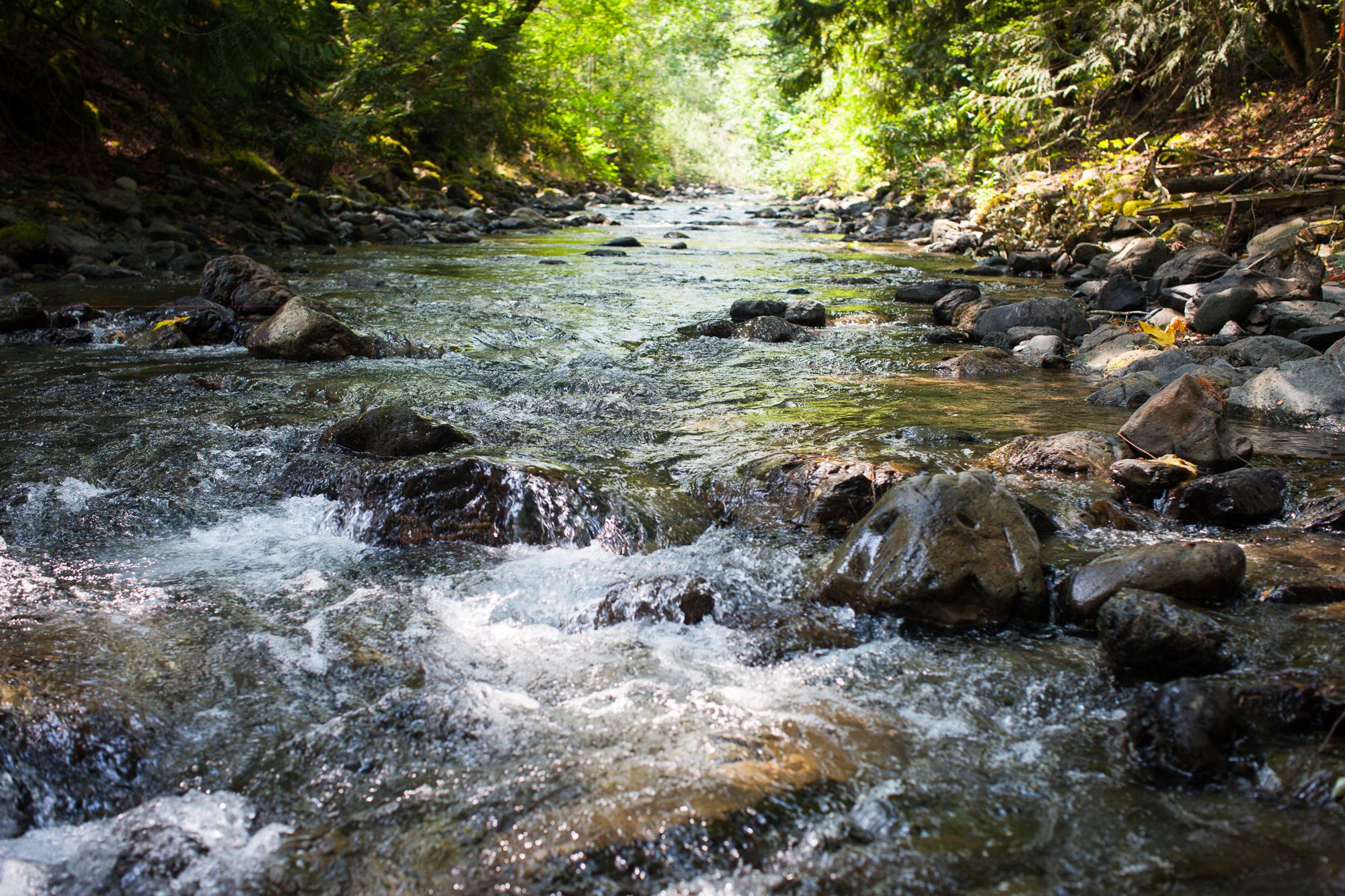 CreeksideMills-4944.jpg