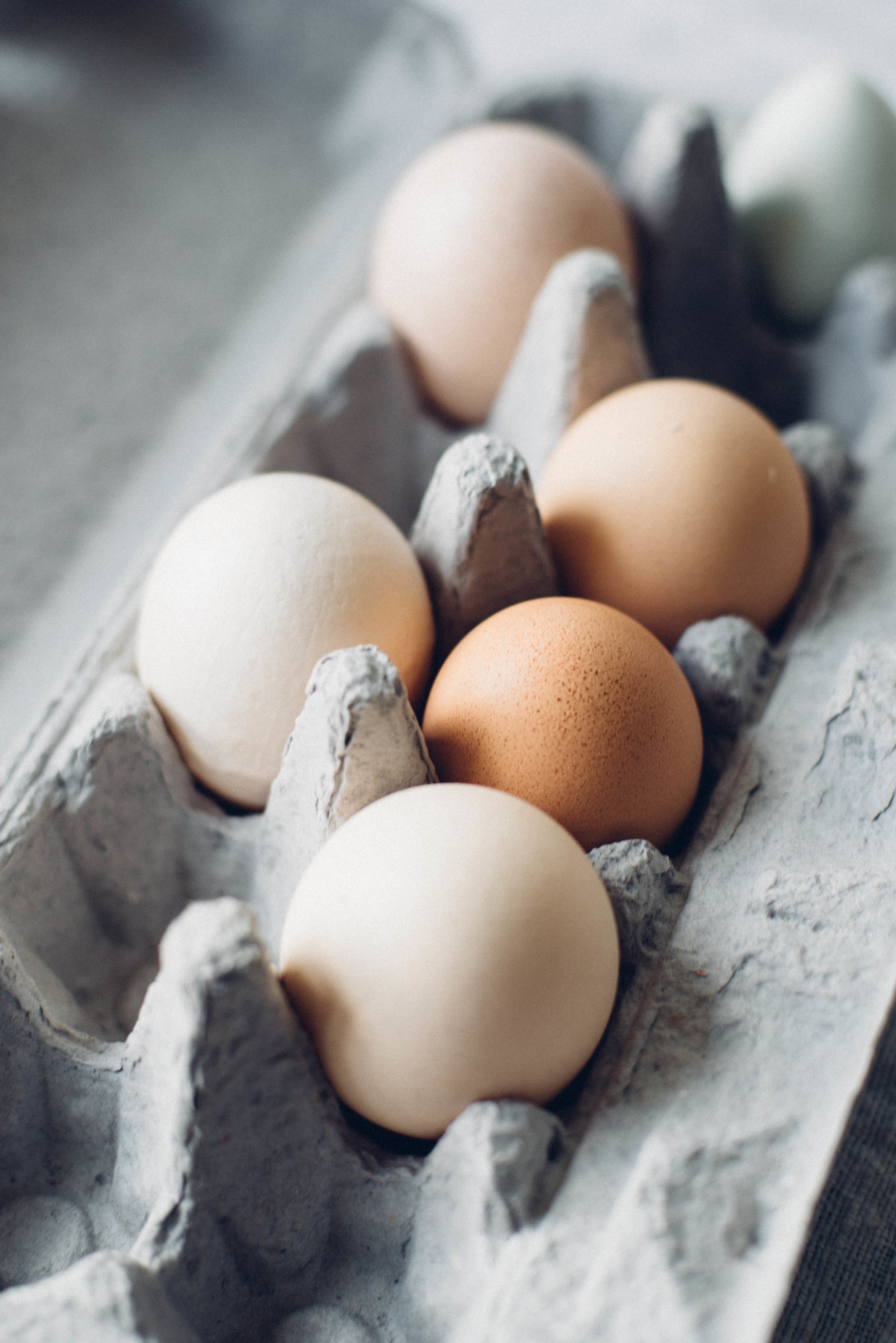 eggs | dolly and oatmeal