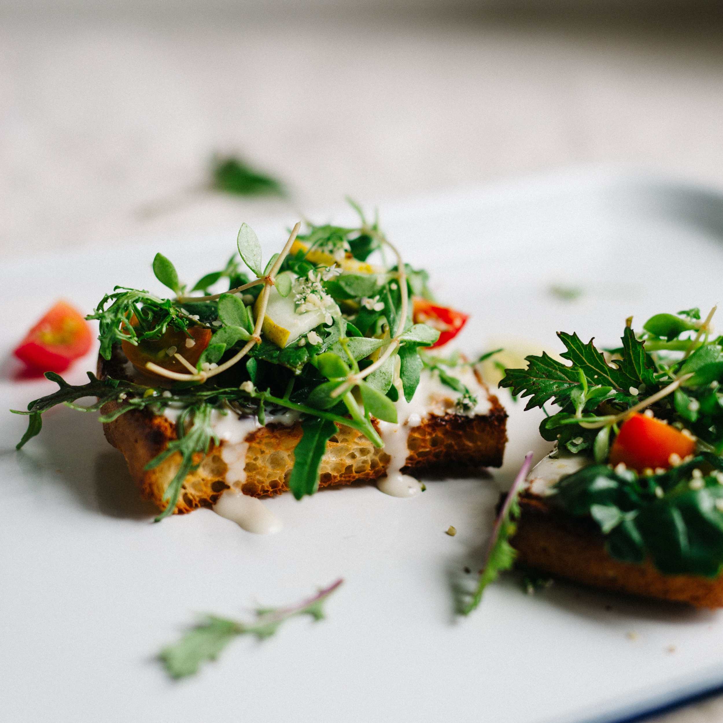 cilantro & hemp salad on tahini-yogurt toast