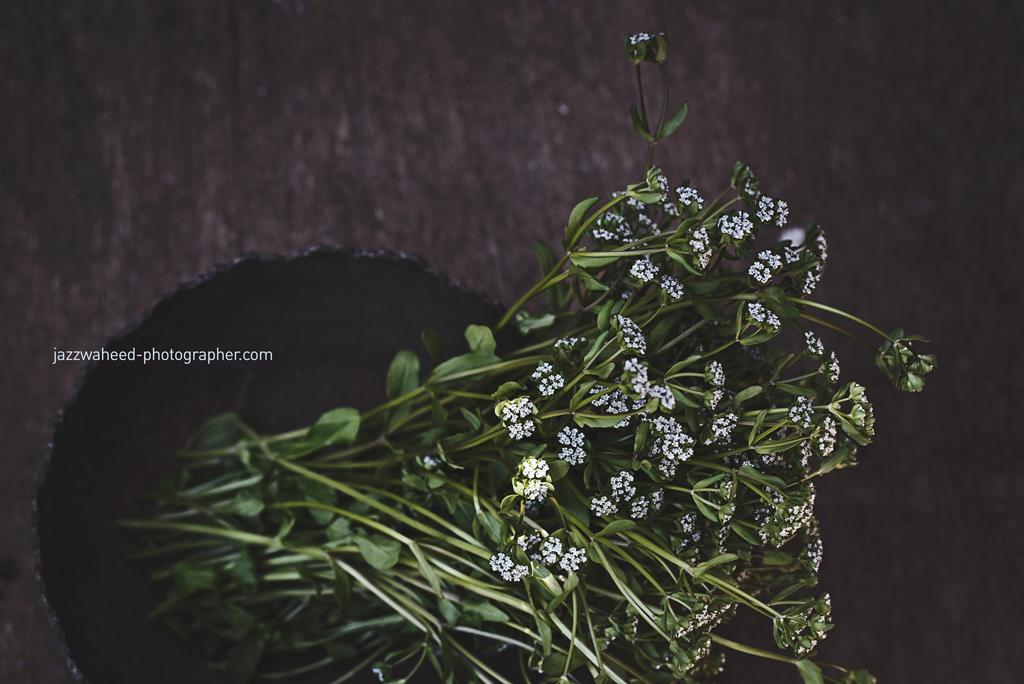 Flora1959.jpg
