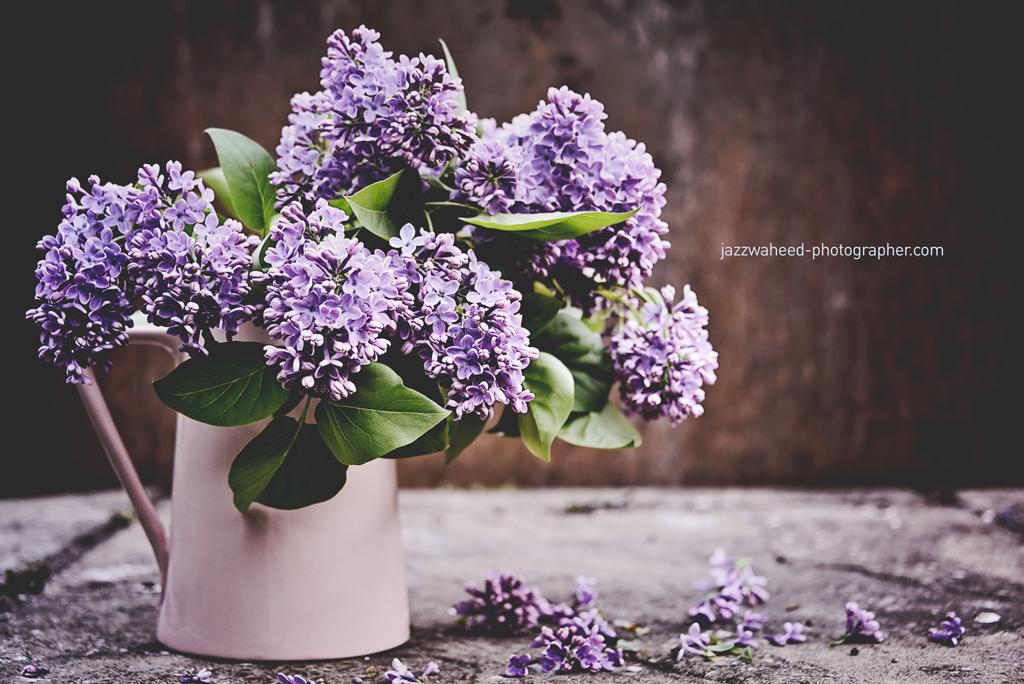 Flora1613.jpg