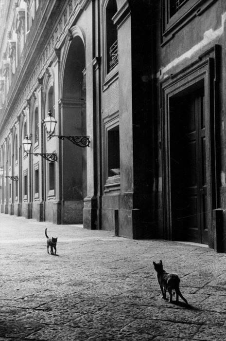 © Leonard Freed / Napoli, 1956
