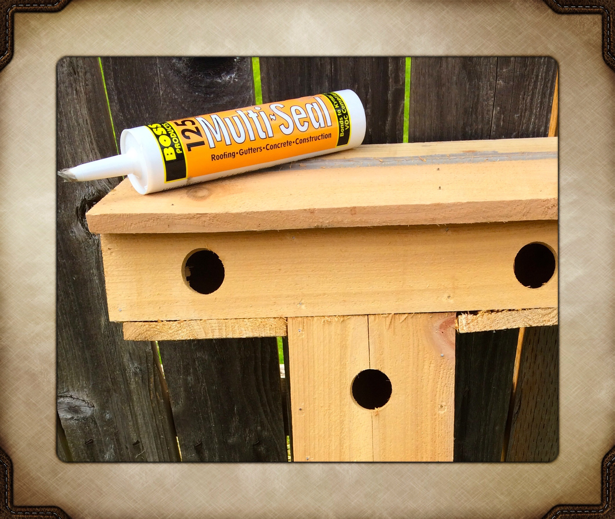 Built a bird house this weekend & finished off with BOSS 125