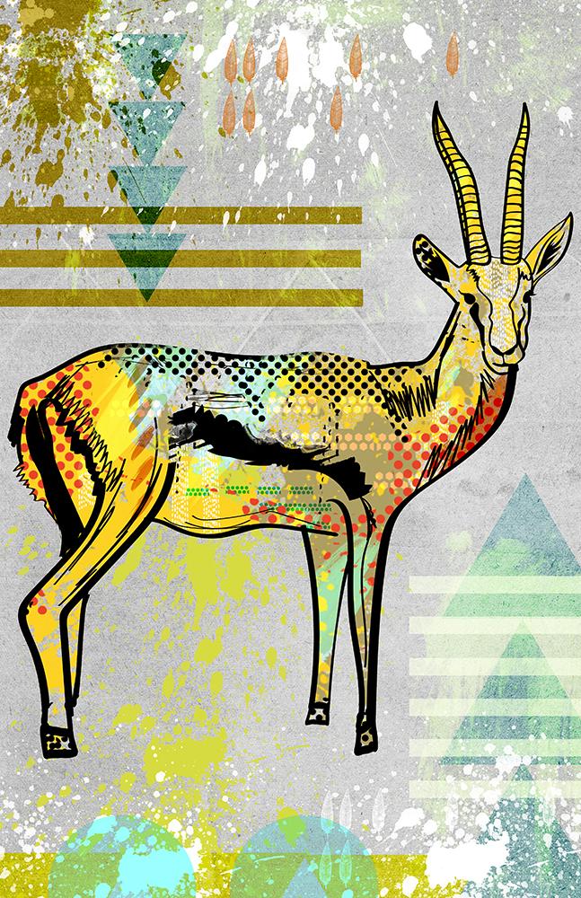 AntelopeWEB.jpg