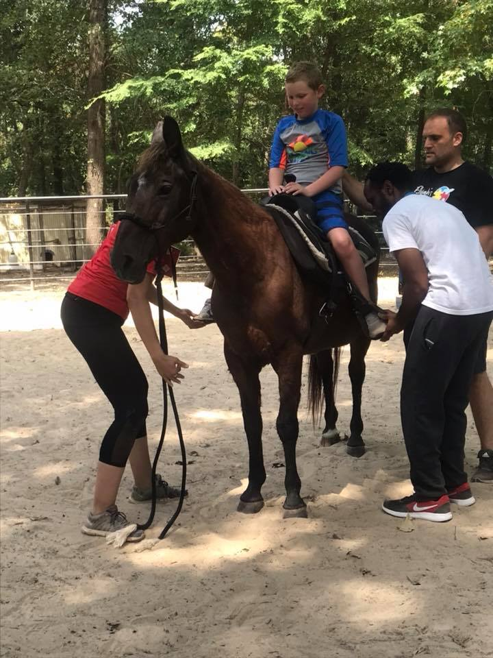 Ezra Horse.jpg