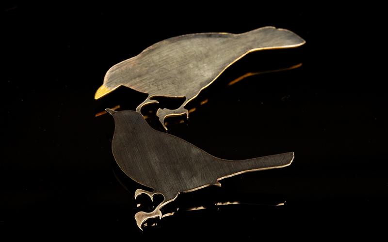 Blkbird.jpg