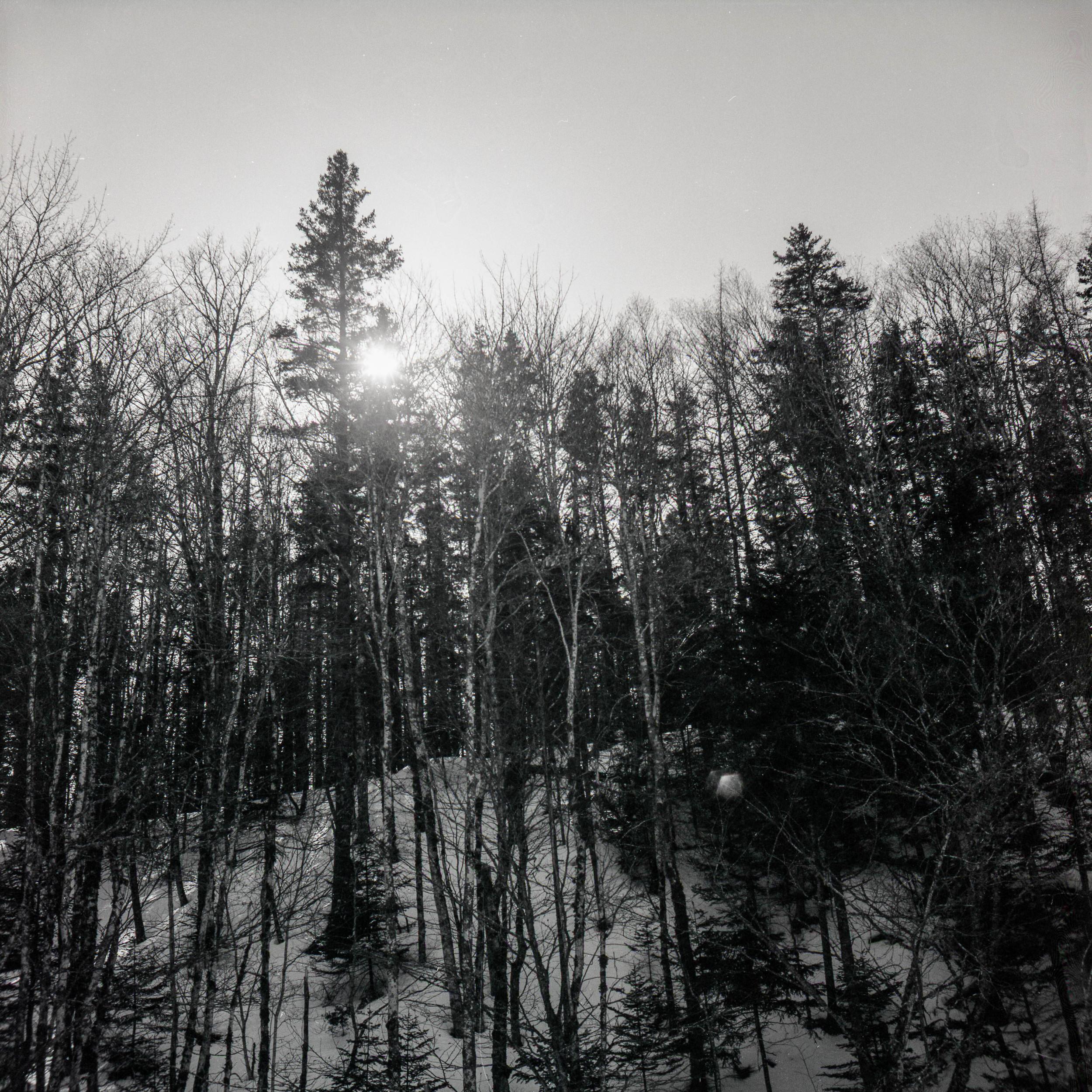 film-8.jpg