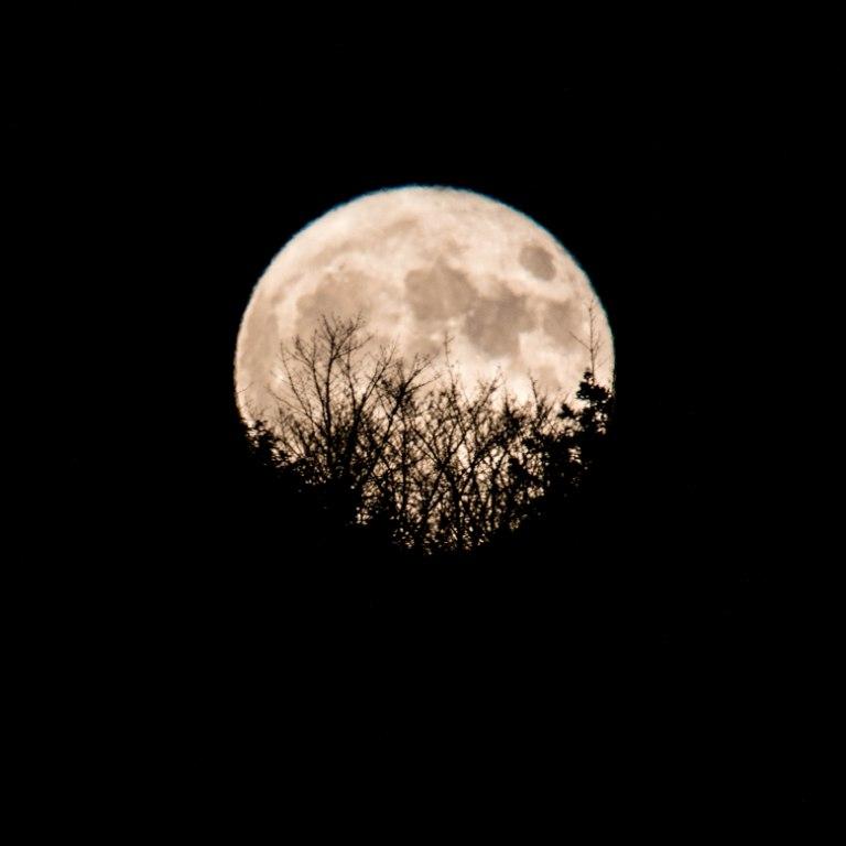 Moon_Cape_Breton
