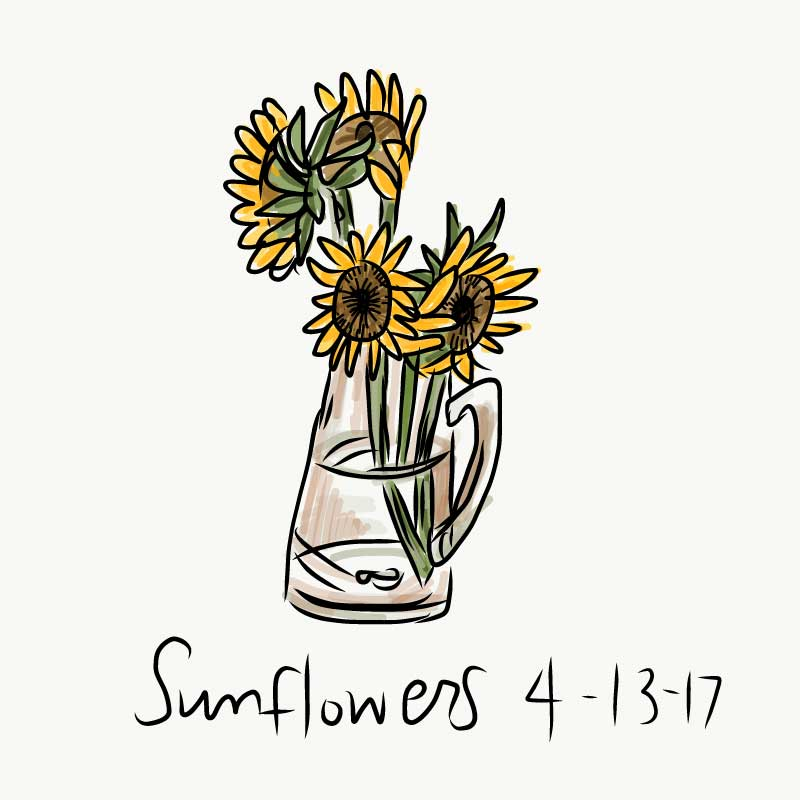 100_sunflowers.jpg