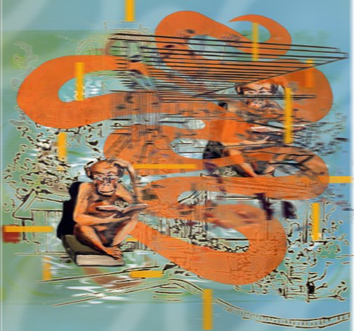 Monkey Curve Neutra , Lenticular print , 18x 22 inches,  2011 .