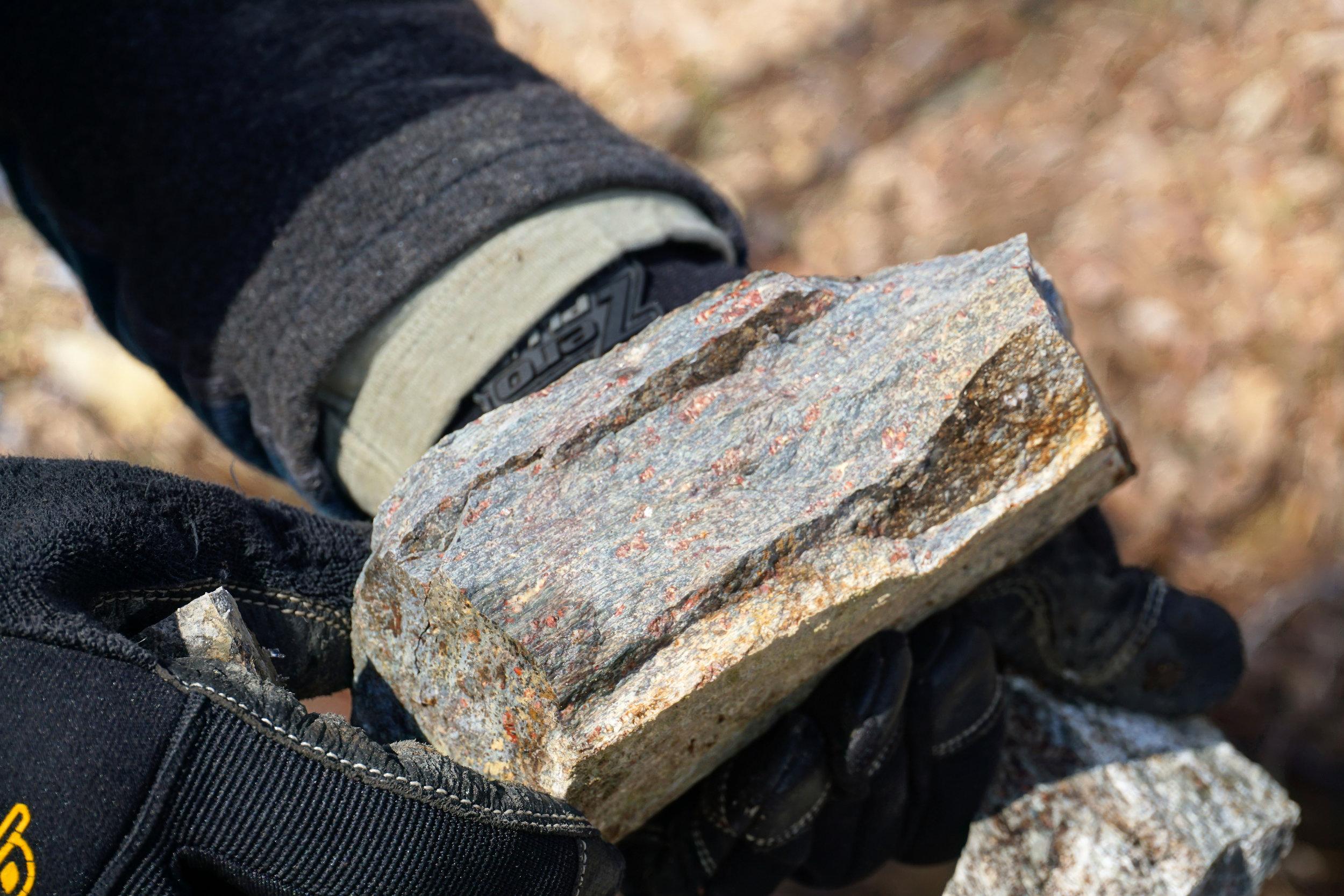 Potassium feldspar and plagioclase phenocrysts in the Buzzard Rock rhyolite.
