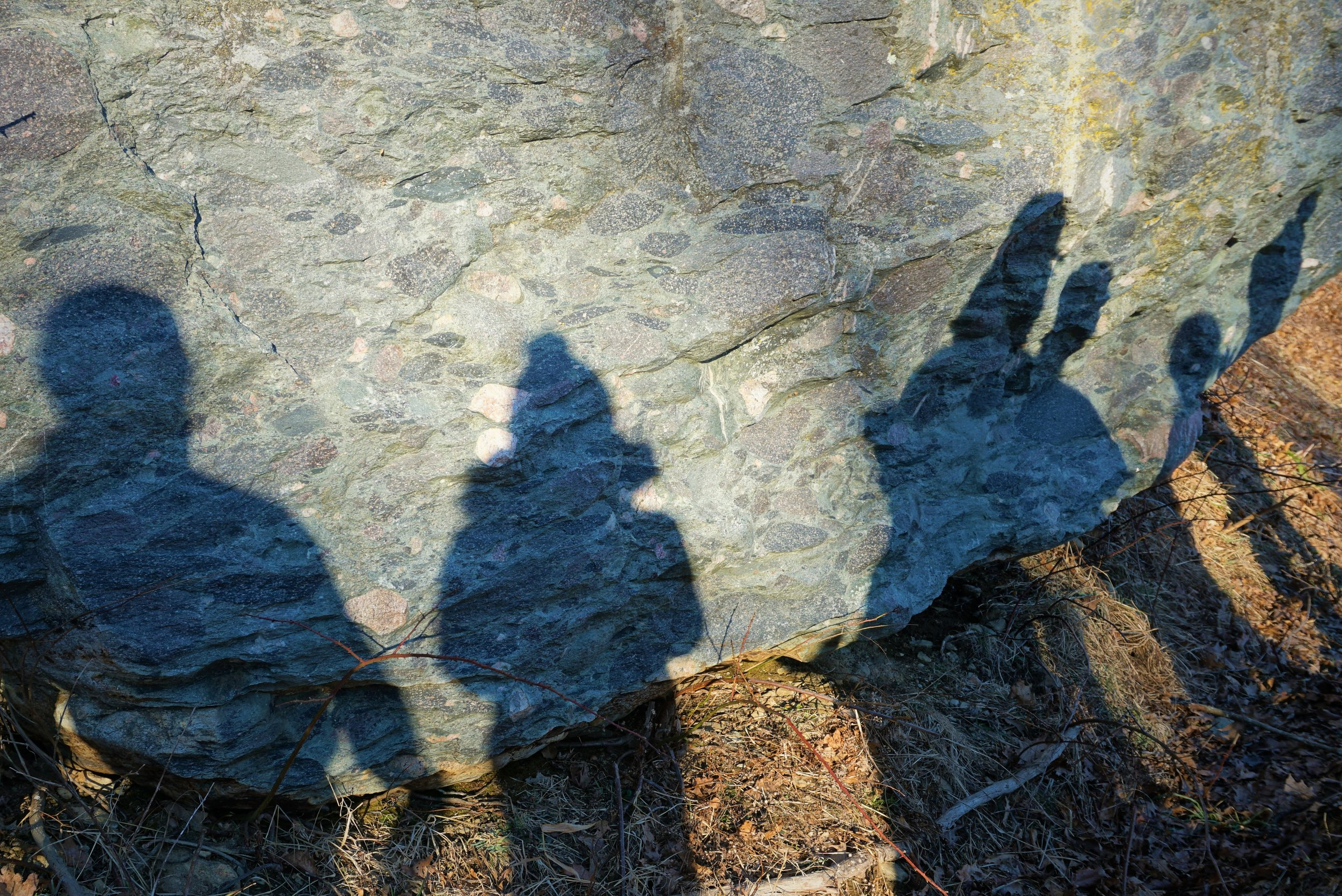 Participants admiring a road cut of boulder conglomerate.