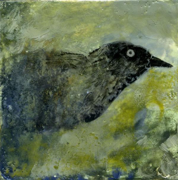 BlackBird.72.jpg