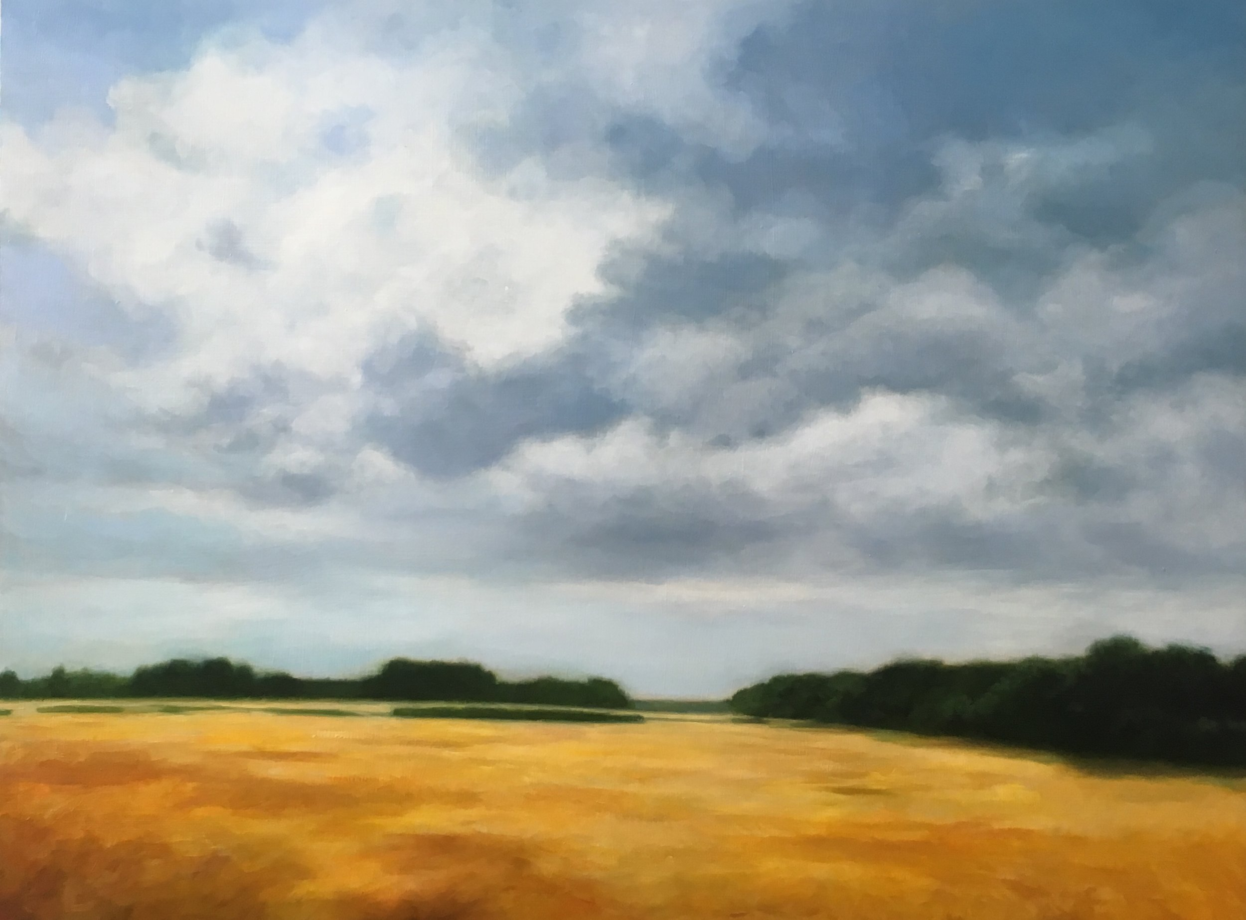 17_Wheat_Field.30x42%22.oil:panel.2018.jpg