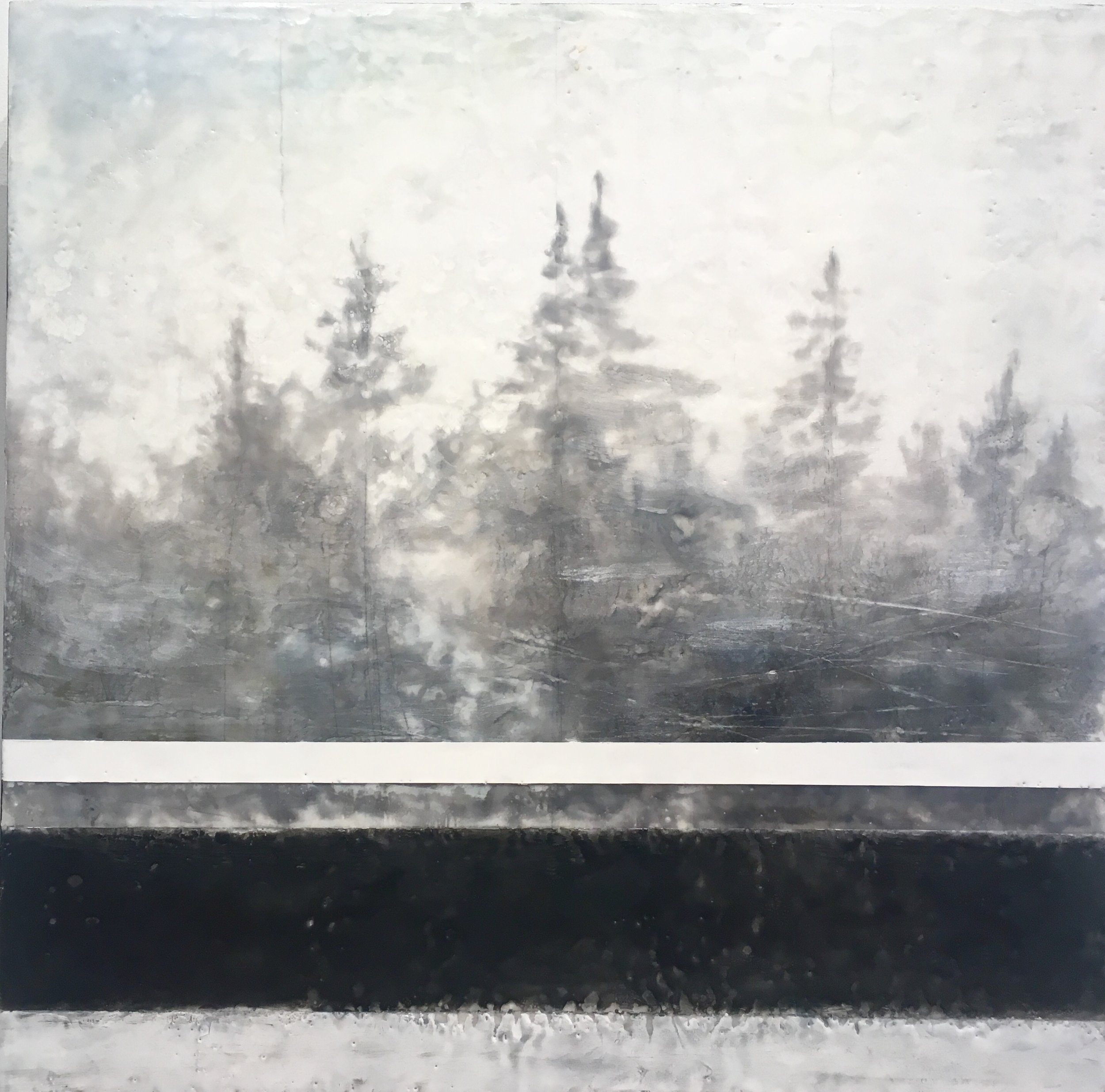 Forest For the Trees.24x24%22. encaustic.jpg