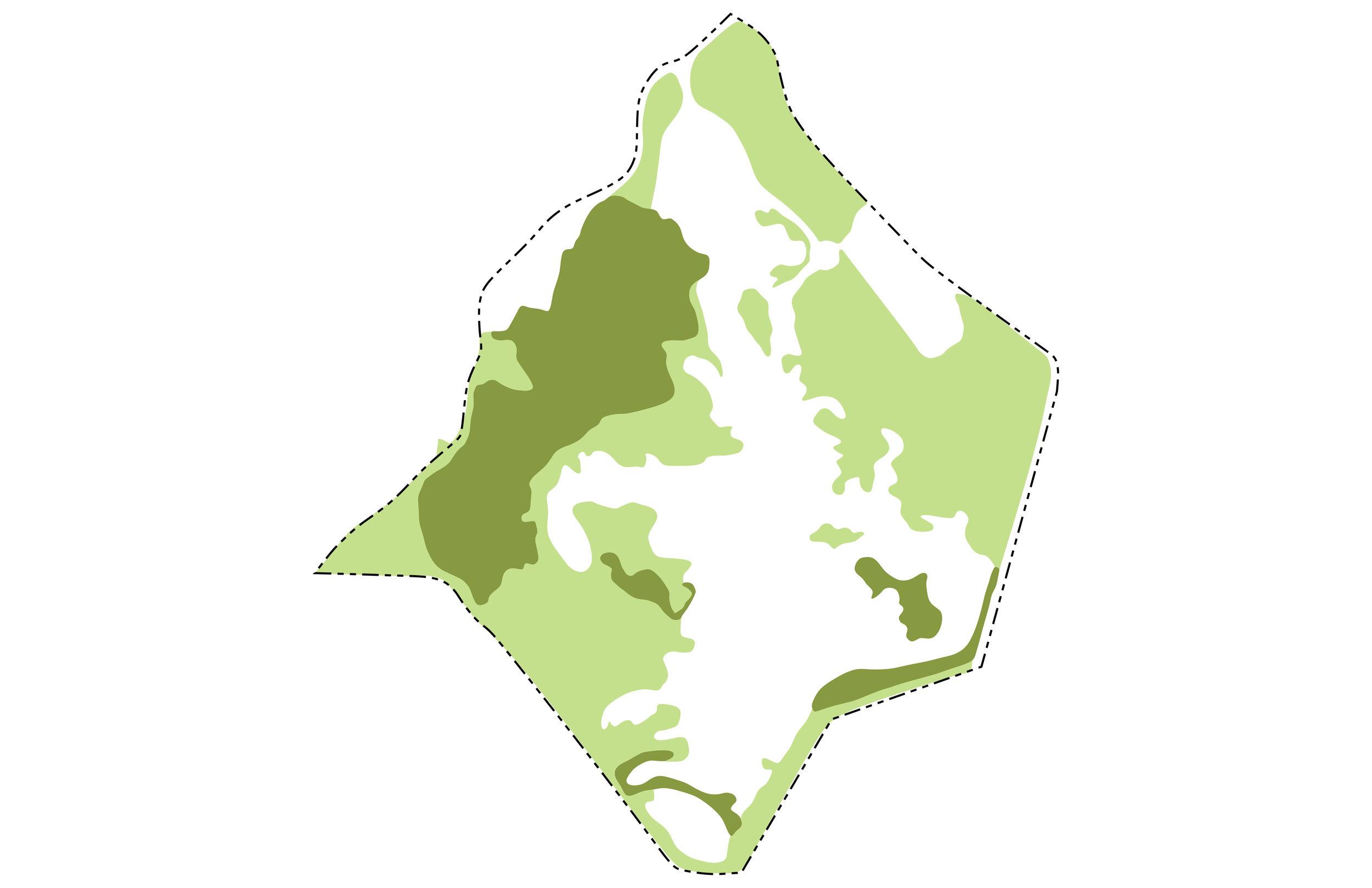 Combined Canopies.jpg