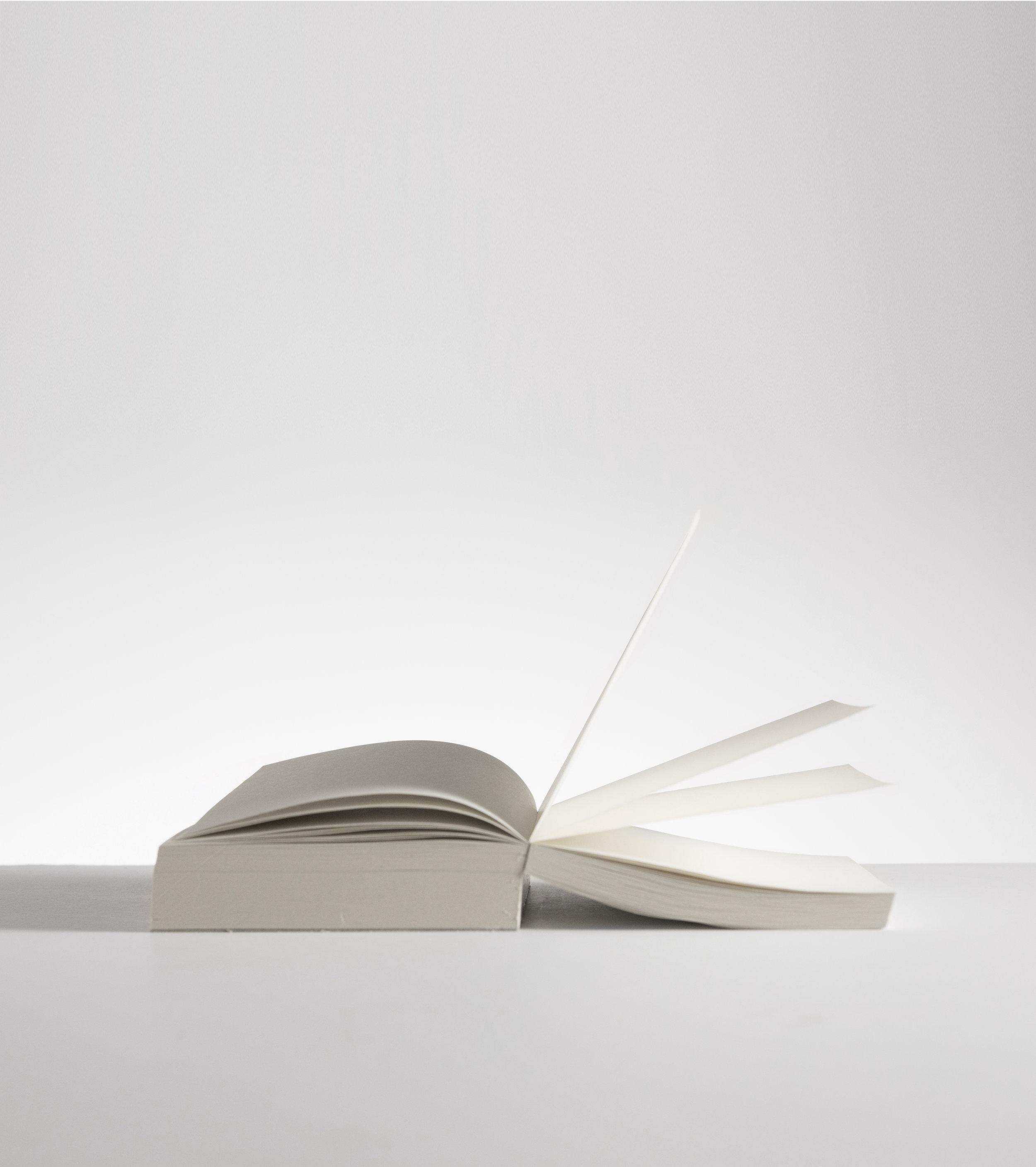 paper 1_vertical.jpg