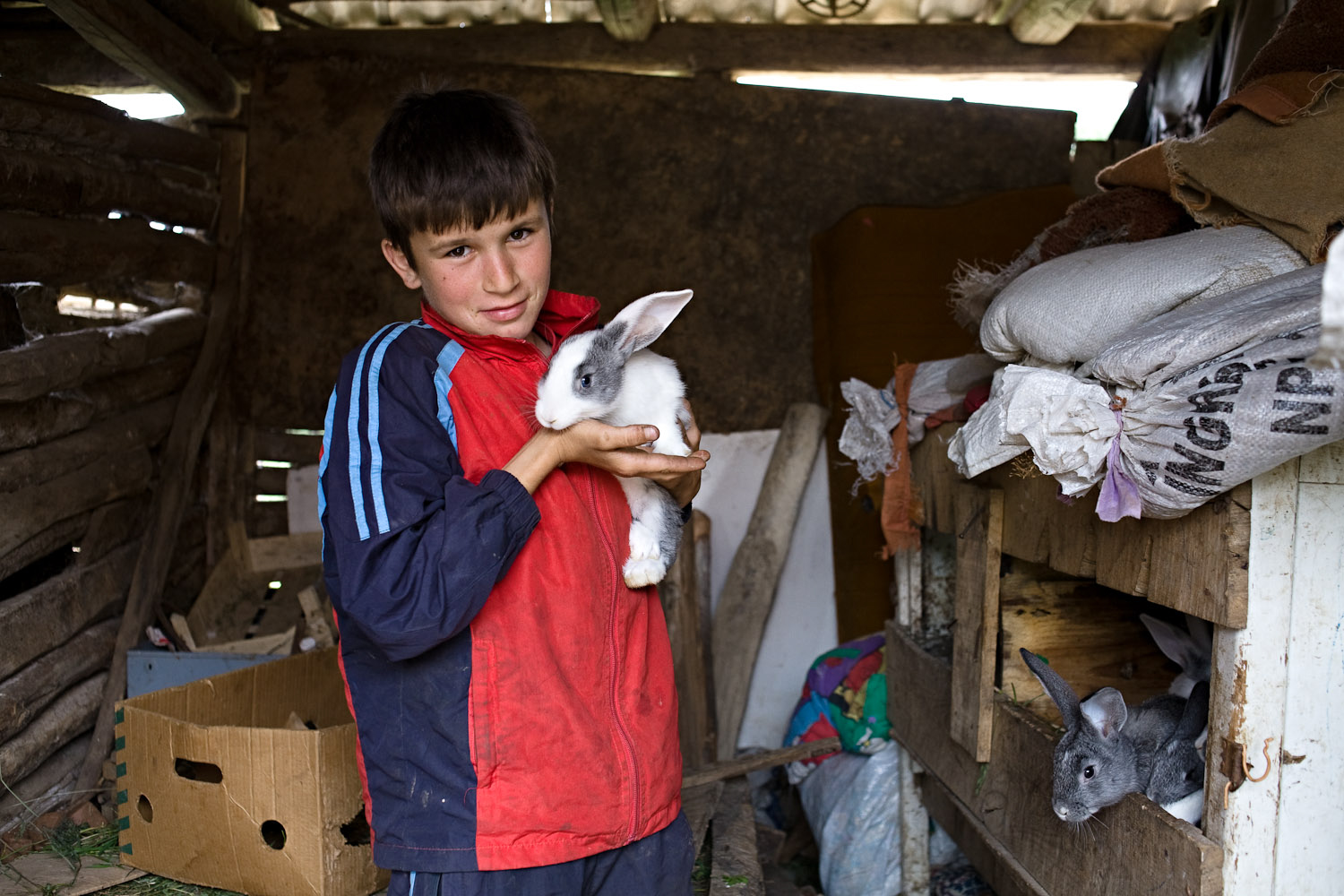 Zece-Hotare village, Romania. Milan Troiac showing off his family's rabbits which are reared for food.