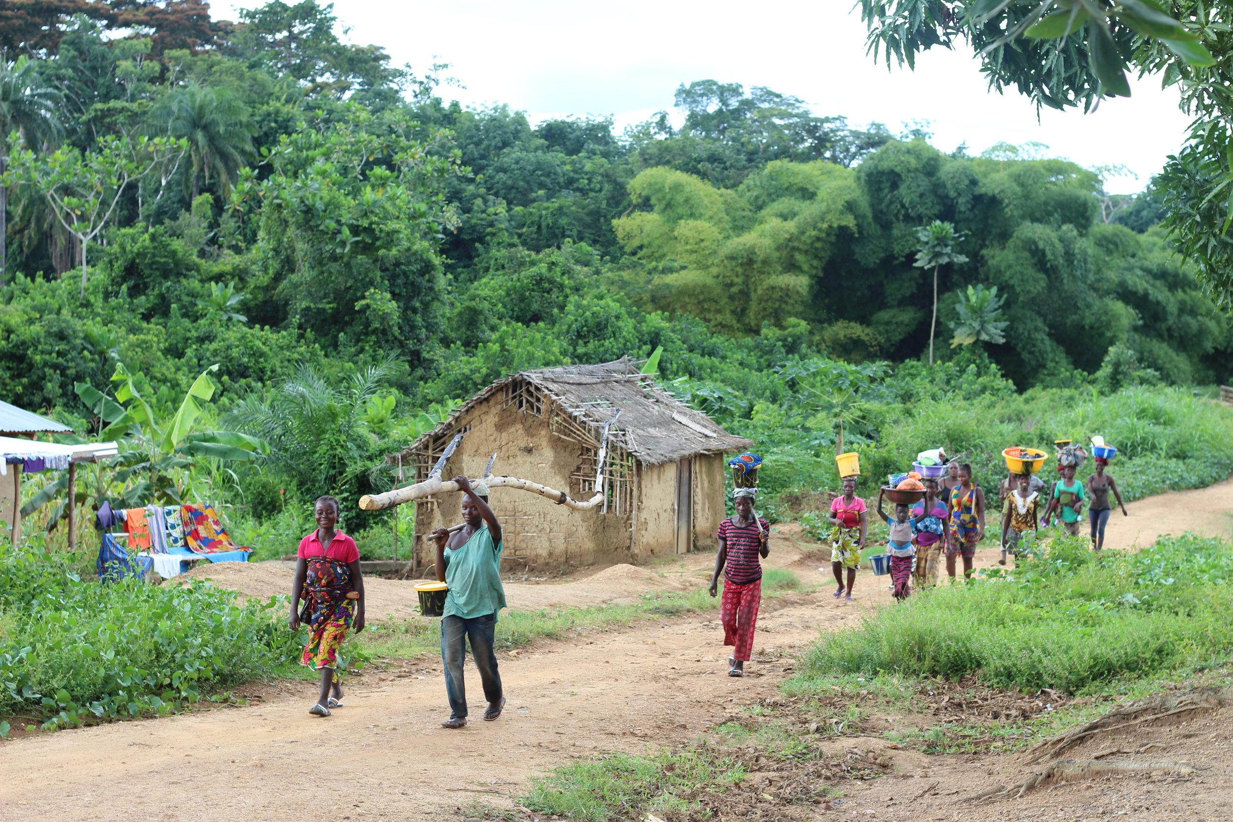 Sustainable Liberia