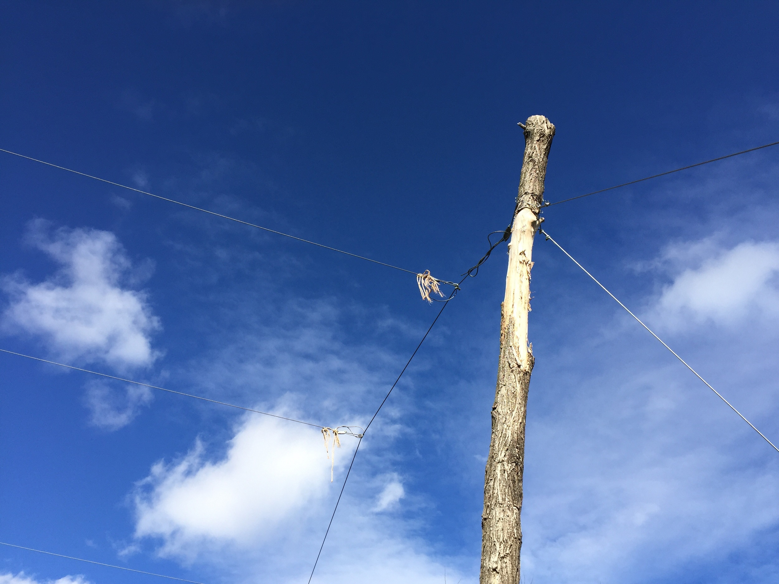 Coir ends on the wire