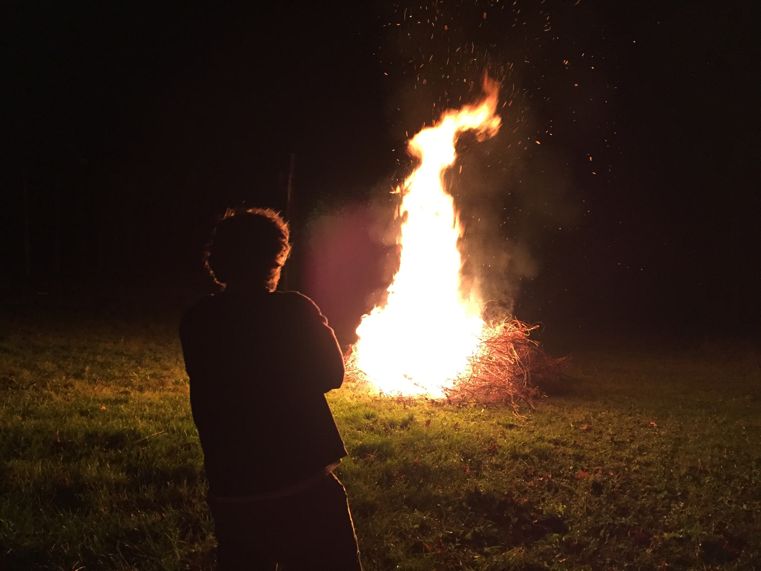 Burning the bines