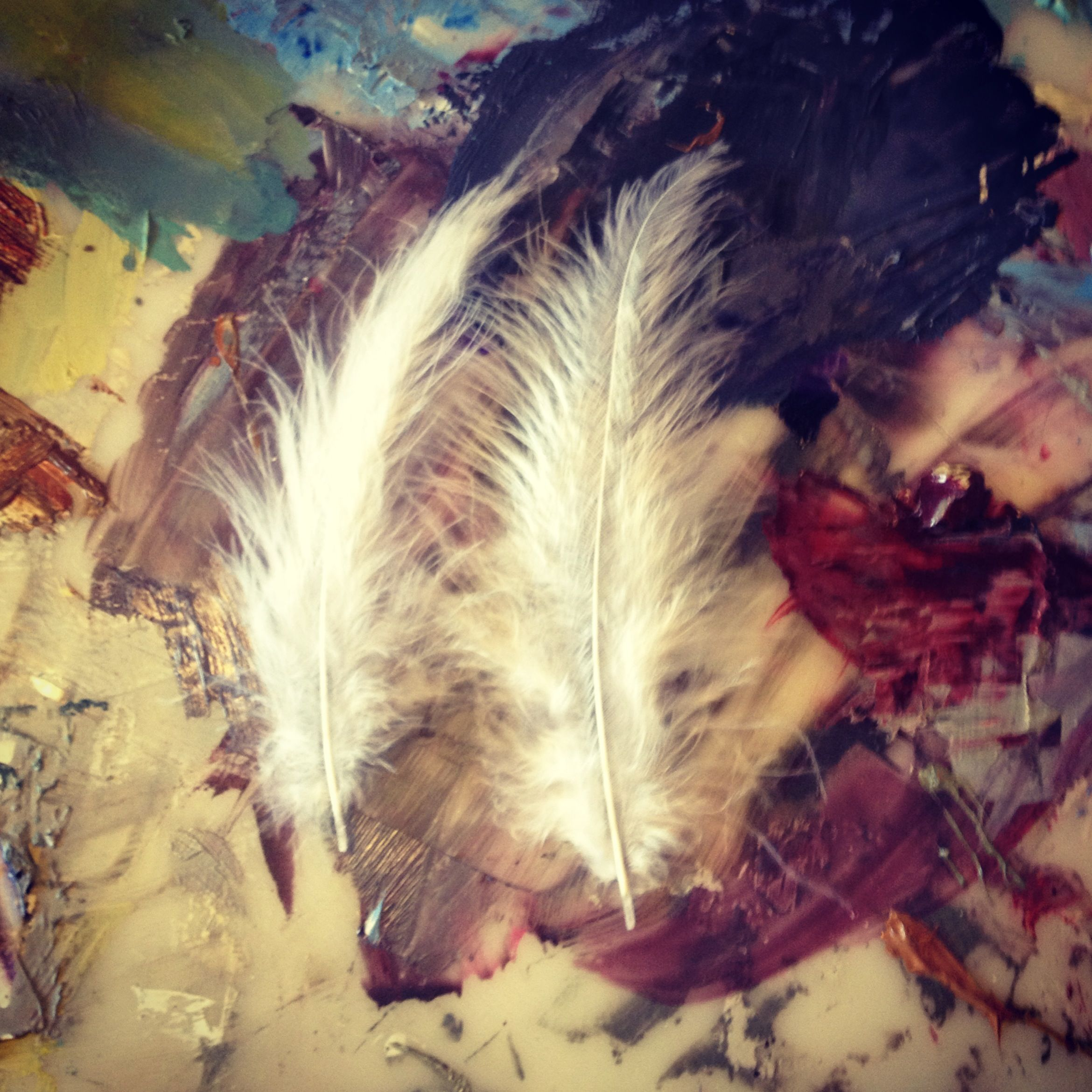 New Feathers ready to be added to the painting
