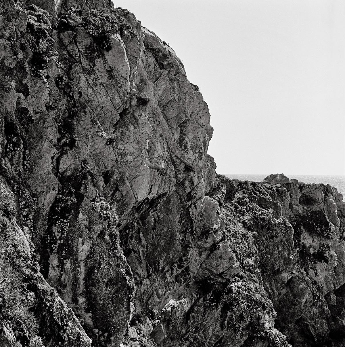 Point-Lobos-Drum-Scan.jpg